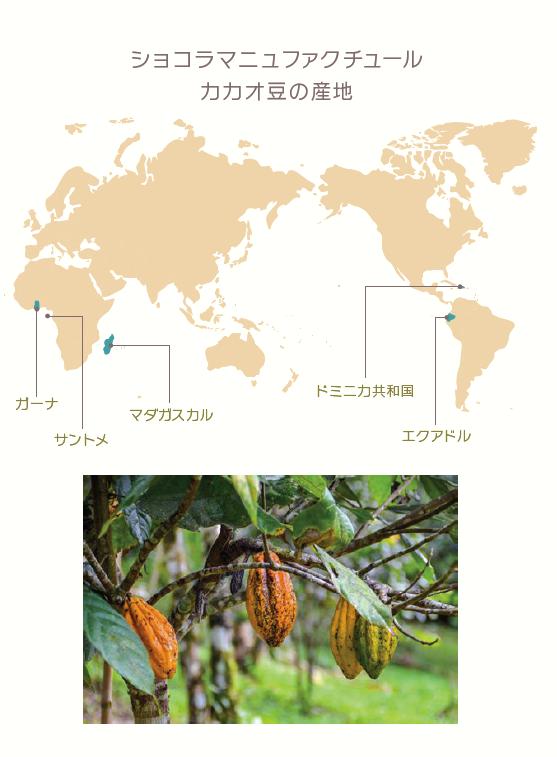 ショコラマニュファクチュール カカオ豆の産地