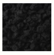 ブラッククランチL